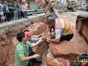 بالصور… عمال بناء يكتشفون بيض ديناصور في الصين