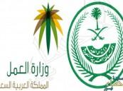 """""""الداخلية"""" و""""العمل"""": ضبطنا 174 ألف مخالف في كل أنحاء المملكة"""