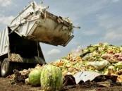 فرنسا تقرر محاربة إهدار الطعام بطريقة مبتكرة