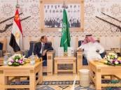 خادم الحرمين يستقبل الرئيس السيسي في قصر العوجا بالدرعية ويقيم له مأدبة غداء تكريمية