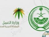"""""""الداخلية"""" و""""العمل"""" تعلنان شروط تصحيح أوضاع المقيمين اليمنيين"""