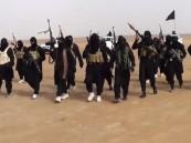 """""""داعش"""" يعتقل 6 أئمة لإقامتهم صلاة التراويح بالعراق"""