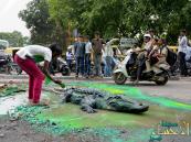 بالصور.. لماذا صنع هندي تمساحا مجسما في أحد الطرق الرئيسة