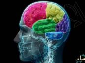 علماء: اكتشاف دماغ ثالث في جسم الانسان