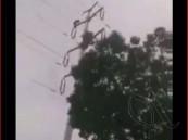 بالفيديو…رجل ينتحر بصعقه لنفسه إثر تسلقه عمود كهرباء عالي الضغط 