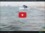 بالفيديو .. شاب مغامر يقود سيارة دفع رباعي فوق البحر في الإمارات