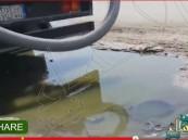 """بالفيديو… في #الأحساء """"بخشيش"""" إجباري يدفع المواطنين للاستغاثة بالمسؤول"""