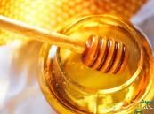 هكذا تعرفون أن العسل مغشوش… لا تقعوا في هذه الأخطاء