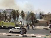 """بالصور.. في #الأحساء حريق ضخم يلتهم """"المزارع"""".. والجهات تستنفر لإنقاذ الوضع"""