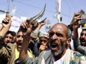 """""""الحوثيون"""" يُطعمون جثث قتلاهم للكلاب في مأرب"""