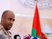 عسيري: الشرعية اليمنية تسيطر على 80 % من أراضي البلاد