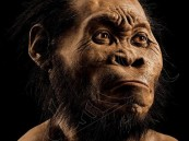 بالصور.. اكتشاف نوع جديد من أسلاف البشر لم يكن معروفاً حتى الآن