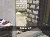 تفاصيل جديدة حول لغز اختفاء الفتاة الكويتية ووالدتها السعودية في مصر