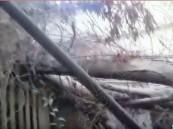 """بالفيديو والصور.. عقار آيل للسقوط يحول أحد أحياء #الأحساء لـ""""بيت زواحف"""" !"""