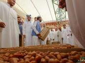 """مهرجان التمور: قطري يظفر بقياسية """"الخلاص"""".. و""""الشيشي"""" يقتحم بـ1950 ريال"""