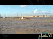 شاهد.. لحظة غرق سائق متهور حاول عبور السيل في سلطنة عمان