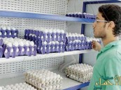 إنشاء جمعية تعاونية لمنتجي البيض للحد من ارتفاع الأسعار
