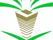 الانتخابات البلدية: إلزام المرشحين المعلنة اسماؤهم بالإفصاح عن مصادر تمويل الحملات