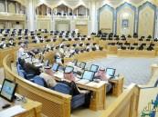الشورى يقرر النظام الأساسي لجمعية الكشافة العربية السعودية