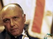 الخارجية المصرية: لم نجد القدر الكافي من تعاون الدول في مواجهة الإرهاب