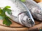 دراسة علمية:  تؤكد تناول السمك يطيل عمر الإنسان
