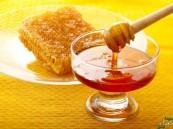 العسل والبذور أغذية الشتاء لتدفئة الجسم