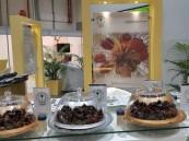 """بالصور.. مركز """"النخيل والتمور"""" بالأحساء يُمثّل المملكة في أول معرض دولي بأبوظبي"""