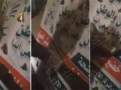 بالفيديو.. شابان مزّقا لوحة إحدى المرشحات: ماعندنا حريم للترشيح !
