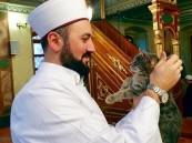 شاهد.. شيخ يفتح أبواب مسجده للقطط الضالة لحمايتها من البرد في تركيا !