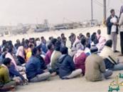 حرس الحدود يكشف حقيقة تعرض قوارب صيد سعودية لقرصنة في مياه الخليج
