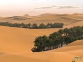 مواطن يعثر على أسرة مفقودة منذ 4 أيام في صحراء حائل