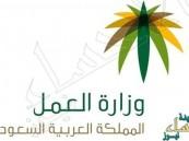 """""""العمل"""" تحدد 6 ساعات عمل لمنشآت القطاع الخاص في رمضان"""