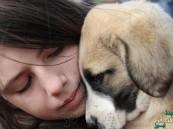 الكلاب قادرة على استشعار أحاسيس الإنسان