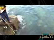 بالفيديو … اصطياد سمكة قرش بكورنيش جدة