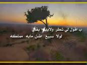 ما بين مؤيد ومعارض .. أنباء عن إيقاف الشيلات
