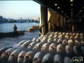 بالصور.. تعرّف على أكبر سوق للثروة السمكية في العالم !