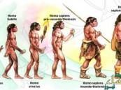 مفاجأة.. ماذا فعل أكل اللحوم بالإنسان القديم؟