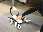 بالفيديو.. روبوت على شكل عقرب يمكن أن يلدغك بذيله !