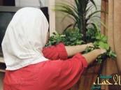 """مصدر: لا زيادة في رسوم العمالة المنزلية.. ولا رفع لغرامات مخالفات """"ساهر"""""""