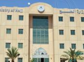 """""""الحج"""": تخلف 1% يمنع تفعيل شركة """"العمرة"""""""