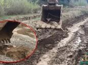عامل جرافة ينقذ غزالين علقا في الوحل