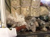 جمرك ميناء ضباء يُحبط محاولة تهريب أكثر من مليون حبة مخدرة
