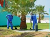 بالصور.. إنعاش شاطئ العقير في #الأحساء بـ 37 مليوناً لـ 3 مشاريع جديدة