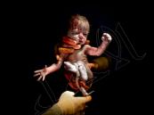 """مساعدة لروحاني تكشف تفاصيل """"بيع الأطفال قبل ولادتهم"""" في #إيران !"""