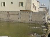 شاهد.. ضاحية في #الدمام تطفو فوق 600 مستنقع وسط صمت المسؤول !!