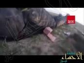 بالفيديو داعشي يوثق مقتل زميله دون ان يقدم على مساعدته!