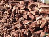 """في #الأحساء .. """"الشتاء"""" يرفع أسعار الحطب وأدوات التخييم 30%"""
