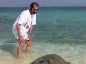 بالفيديو.. محمد بن راشد يداعب سلحفاة ضخمة بأحد الشواطئ