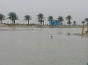 """بعد غمره بالماء.. بلدية العقير تزيل المستنقعات والمياه الراكدة حول شاطئ العقير """"صور"""""""