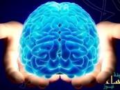 ما هو العمر الحقيقي لنضج مخ الإنسان؟!